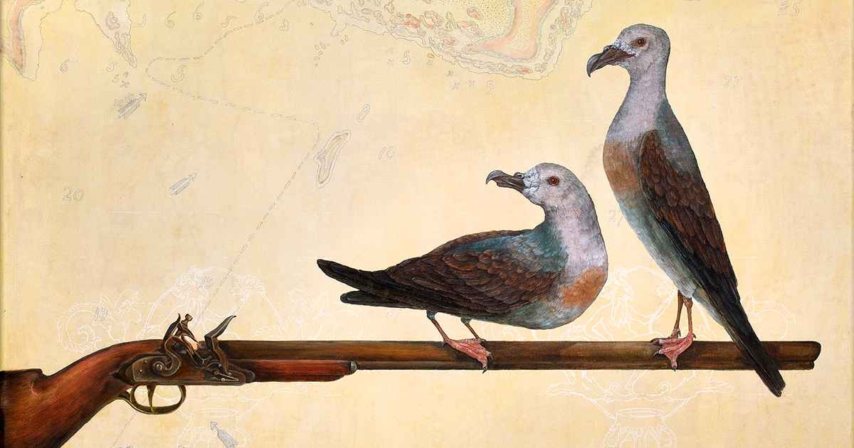Providence Petrels (detail) by Nicky Dickson