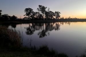 Ranjini Iyengar, Peaceful Reflection