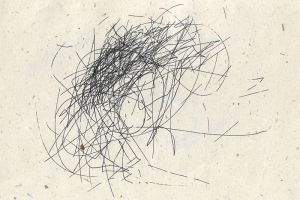 Megan Kennedy, Wind Drawing