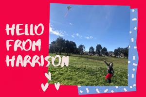 Jasmine Fellows, Hello from Harrison