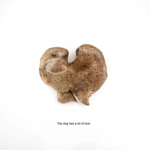 Garden Archaeology-6: Dog's love by Katie Hayne