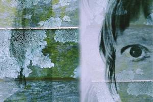 Kimberley Pollock, Lichen Meld