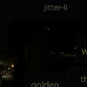 JITTER-LIT by Ross Gibson