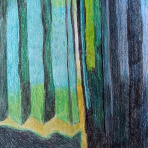 Green by Belinda Locke