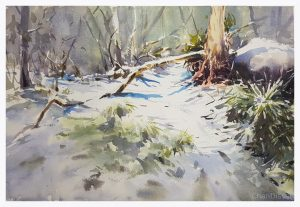 Chan Dissanayake, Snow Shadows Corrin Forrest, Watercolour