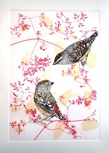 Fenja T. Ringl,Spotted Pardalotes in Clematis, Handprinted linocuts and solar plate etchings, with watercolour